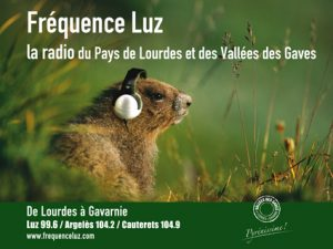 4X3 FREQUENCE LUZ- 2016